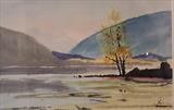 Lake Wanaka Tree NZ by James Roberts, Painting, Watercolour on Paper