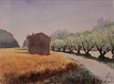 Olive grove in Umbria by James Roberts, Painting, Watercolour on Paper